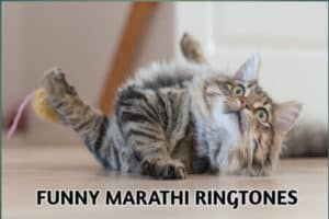 funny-marathi-ringtones-free-download